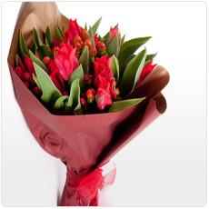 bouquet-tulipas